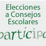 elecciones-a-consejos-escolares